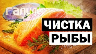 Галилео. Чистка рыбы 🐟 Fish cleaning