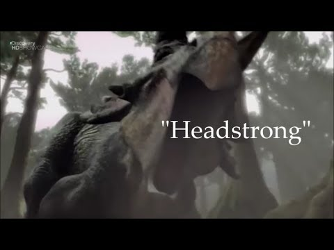 Horned Dinosaurs Tribute - Headstrong