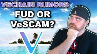 VeChain Rumors: FUD or SCAM? | Unbiased Opinion on the Evidence So Far