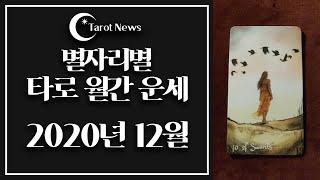 [2020년 12월: 해밀 이주원 교수의 별자리별 타로 월간 운세]