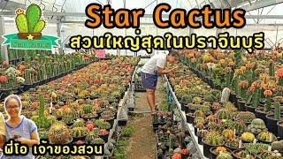 สวนกระบองเพชร Star Cactus ปราจีนบุรี สวยมากๆ