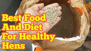 What To Feed Your Chickens So They Lay Eggs Year Around | Best Food And Diet For Healthy Hens
