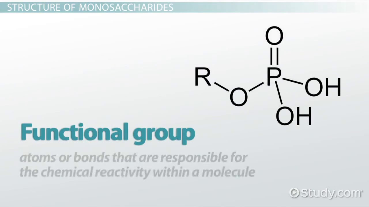 Monosaccharides Definition Structure Examples Video Youtube