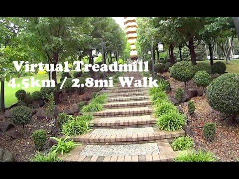 Virtual Treadmill Walk - Nan Tien Temple. 4.5km / 2.8mi @ 6kph / 3.7mph Berkeley, NSW Australia