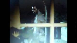Decades of Horror: Ridley Wilmott