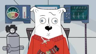 An Adorable, Heartbreaking Cartoon Celebrates Laika, the First Dog in Space