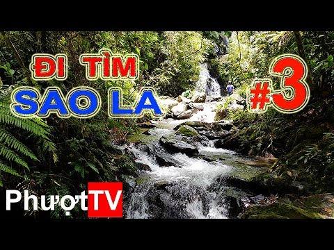 Phượt.TV | #3 - ĐI TÌM SAO LA - Tai nạn rình rập trong rừng