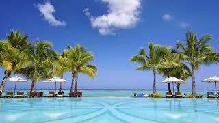 Картинка лето. Пальмы, palms, море, paradise, tropical, beach, пляж, песок, JPEG
