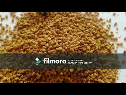 raw-bee-pollen-recipes-&-bee-pollen-benefits-:-my-experience