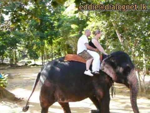 Beautiful Sri Lanka - Elephant Riding -