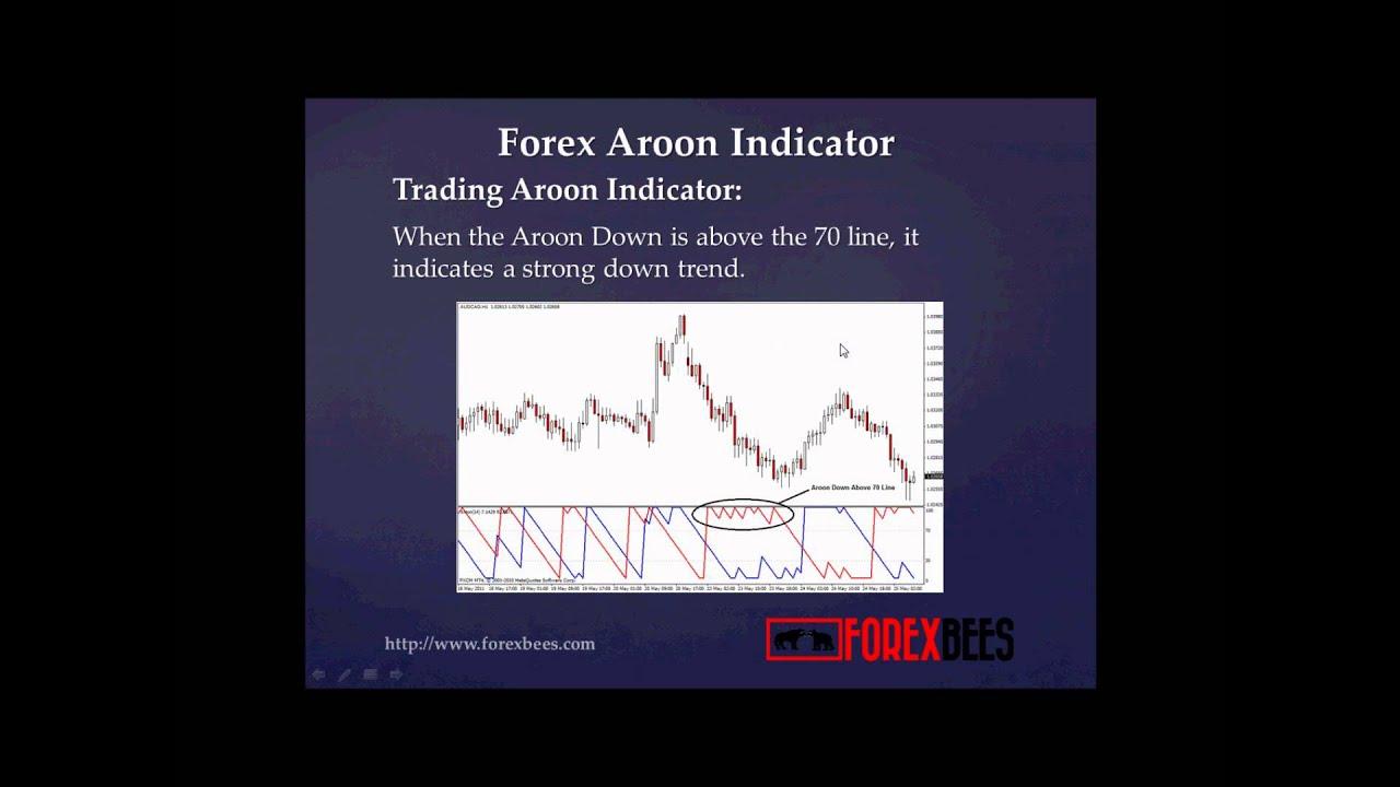 Aroon oscillator forex