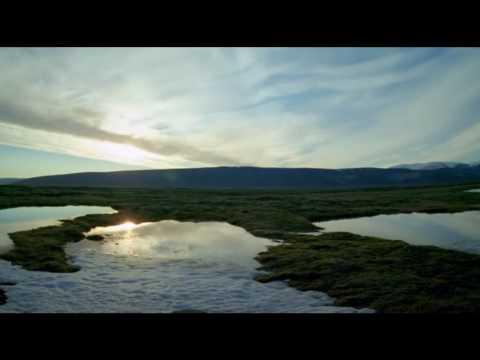 The Smoke Saves Lives - Kyte (Planet Earth BBC) mp3