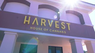 Harvest - Empiricus Miami