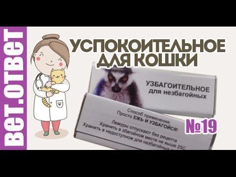Вопрос: Опасна ли валерьянка для кошек?