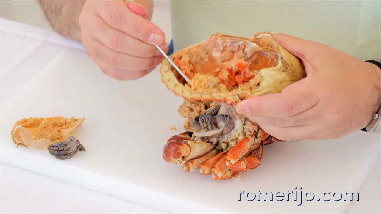 Romerijo c mo comer buey de mar for Q hago de comer