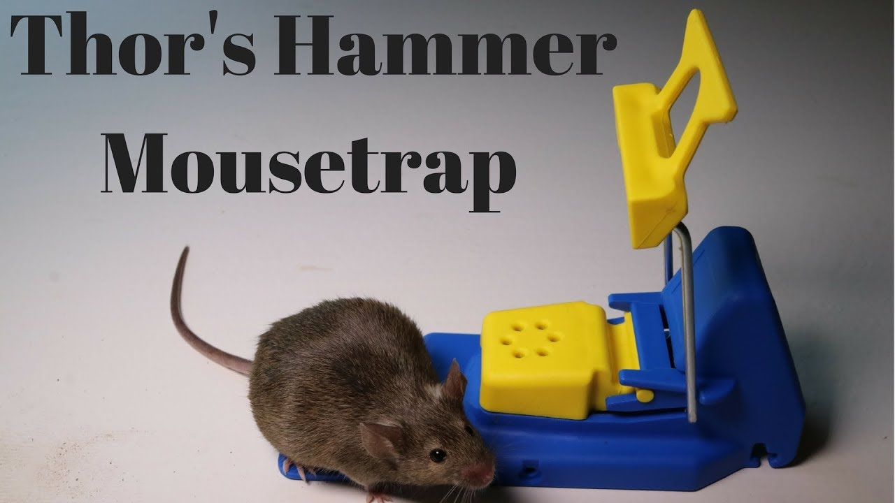 thor-s-hammer-mousetrap-from-sweden-the-mjlner-mouse-trap
