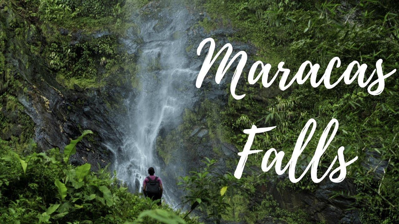 Trinidad Waterfalls and Rivers - WheelBarrow Imaging  Trinidad And Tobago Maracas Falls