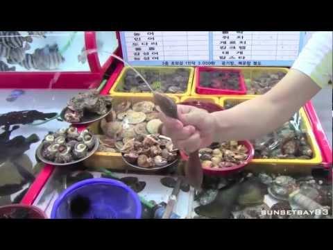 Busan, South Korea - Short tour of the city and fish markets