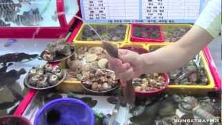 Busan, South Korea - Short tour of the city and fish markets