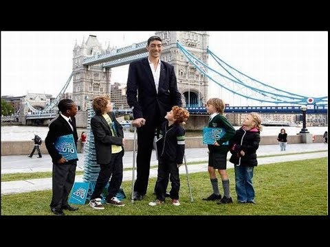 10 Countries With Highest Average Height In The World