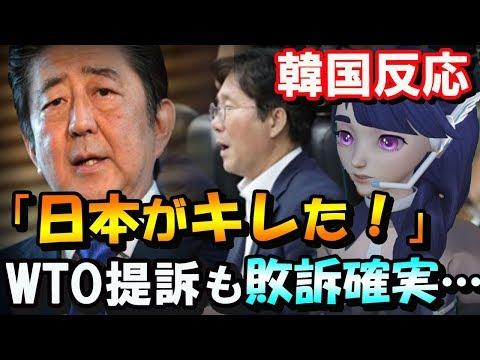 【韓国の反応】「日本がついにキレた…」現金化待たずして実質の最強制裁発動!→韓国大騒ぎ!WTOに提訴しても敗訴確実か…