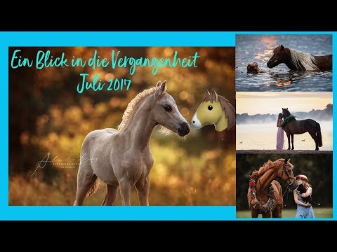 😍 Die schönsten Pferdebilder aus dem Juli 2017 - Pferde Bilder NonStop 😍 - Pferdefotografie