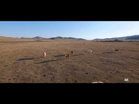 GH4(UHD)Aerial Video in Inner Mongolia of China