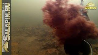 Вскрытие зимней кормушки под водой (сильное течение) [salapinru](После опубликования предыдущего видео про зимнюю кормушку, которое было отснято в стоячей воде, возникли..., 2014-02-04T06:20:19.000Z)