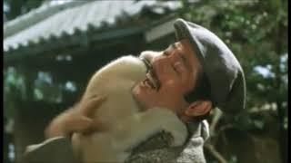 Download Video Hachiko Monogatari (1987) clip MP3 3GP MP4