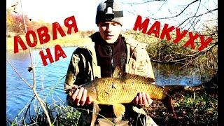 Рыбалка на ЗАКИДУШКИ на МАКУХУ Ловля Карпа Сазана в Октябре 2021