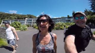 New Zealand 2017 (Paihia Kerikeri)