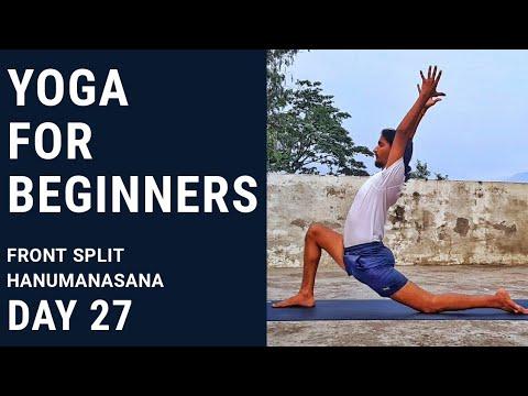 yoga for beginners  middle split  hanumanasana  day 27