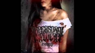 Jizz In Your Pants Deathcore Compilation