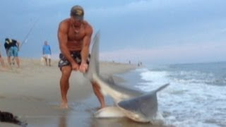 Man Wrestles Shark With Bare Hands: Caught on Tape   Good Morning America   ABC News