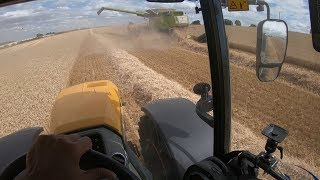 JCB FASTRAC and CLAAS Lexion bringing in the HARVEST