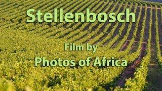 Stellenbosch SD - South Africa Travel Cahnnel 24