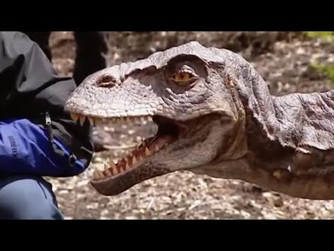 The Making of Walking with Dinosaurs in HQ Part  3  BBC