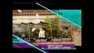 TIERNO VERANO DE LUJURIAS Y AZOTEAS