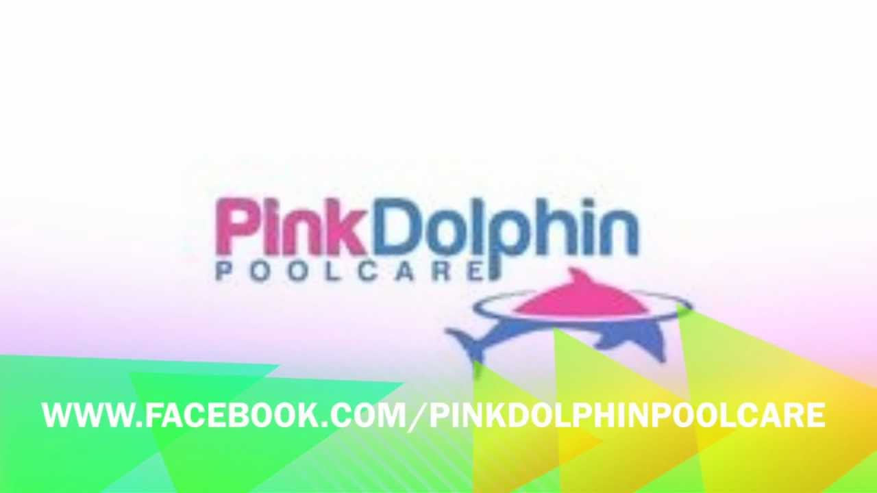 Weekly Pool Service And Swimming Repair Phoenix Az Pink Dolphin Care