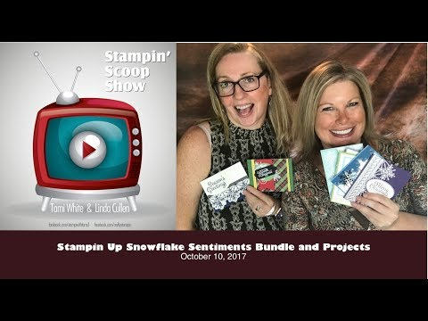 Over 15 Snowflake Sentiments Stamp Set Ideas on The Stampin Scoop Show Epi 41 w/Stampin Up
