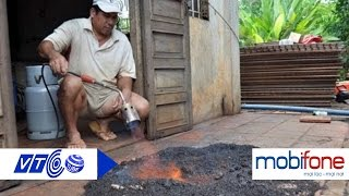Kinh hoàng vì bọ đậu đen phủ kín nhà | VTC