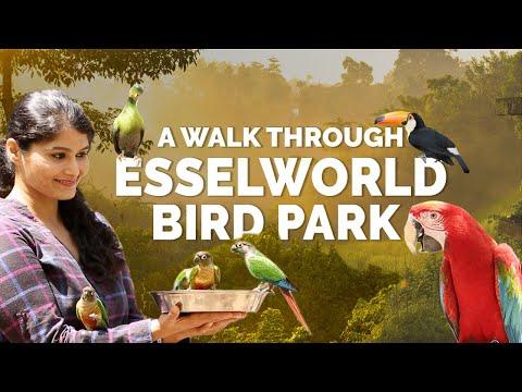 Inside Mumbai's First Interactive Bird Park at Essel World