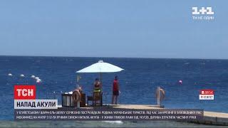 У Шарм ель Шейху акула атакувала українських туристів