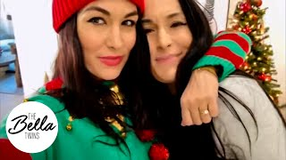 Happy Holidays from Brie Bella's house to YOU!