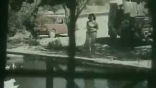 Родные берега. (Dogma sahiller 1989)