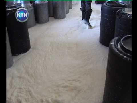 Milk Crisis In Ol Kalou
