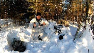 Охота на рябчика зимой 2018. Вылет рябчика из снега
