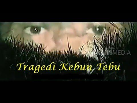 Download Tragedi Kebun Tebu - Kisah Nyata