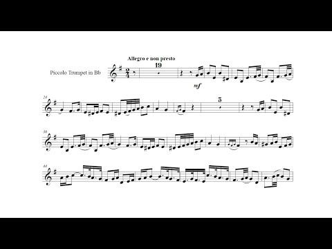 Tomaso Albinoni: Concerto op.9 n.2 (Maurice André, trumpet) I