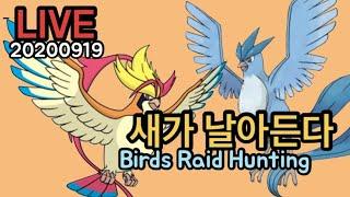 [포켓몬고] 메가피죤투와 프리져 사냥 갑니다~ Pokemon Go Korea